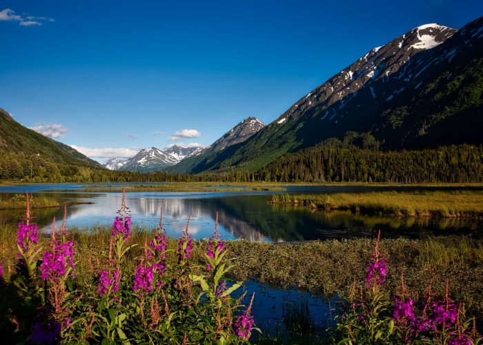 Alaska: Four Seasons of Fun in the Far North
