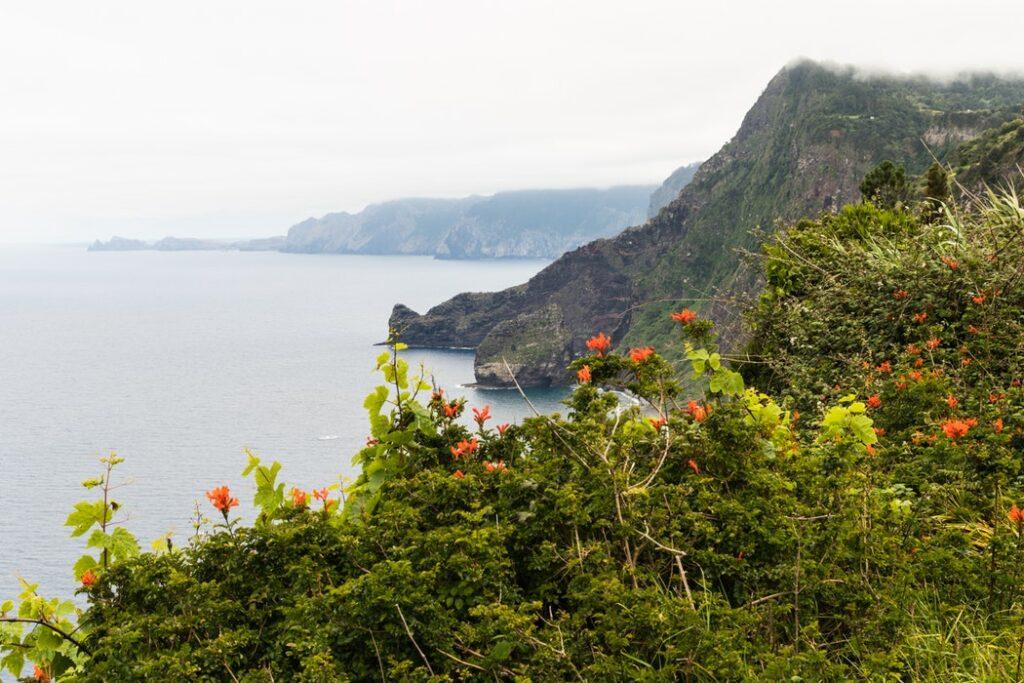 Santana, Madeira, Portugal. Photo by Said Laand.