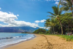 10 Reasons Why Families Love Hawaii